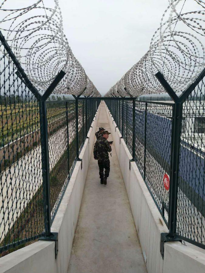 监狱刺绳隔离网